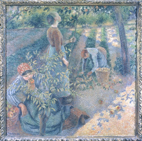 Camille Pissarro, Apple Picking, 1881-1886, oil on canvas, 49 5/8 x 50 in. (126 x 127 cm), Ohara Museum of Art, Kurashiki, Okayama Prefecture, Japan