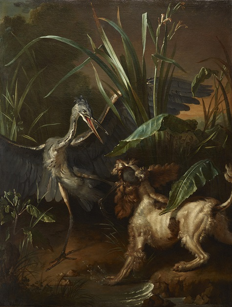 Jean-Baptiste Oudry, Water Spaniel Confronting a Heron, 1722, oil on canvas, Lent by the Michael L. Rosenberg Foundation