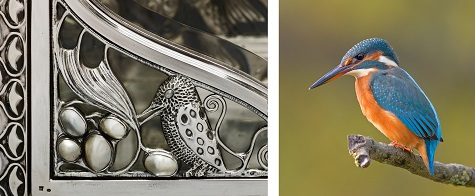 Detail of Wittgenstein Vitrine; Andreas Trepte, Common Kingfisher, photograph. Wikipedia, web. November 24, 2014.