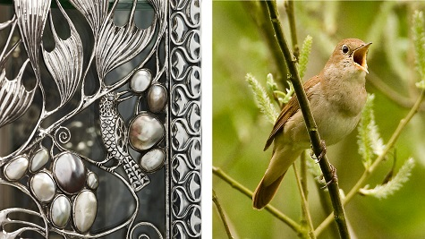 Detail of Wittgenstein Vitrine; Garth Peacock, Common Nightingale, photograph. Bird Life International. Web. November 24, 2014.