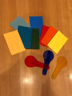Color paddles and paint chips help the students explore color!