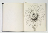 Otis Dozier, Sketchbook, 1974, Dallas Museum of Art, gift of The Dozier Foundation.