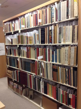 Reves books in the library workroom, their home during the cataloging project.
