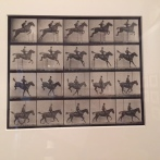"""Horse in Motion"" by Eadward Muybridge. Absolute fav. Early foray into motion photography."