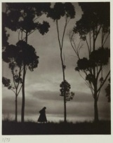 "Karl Struss, ""Storm Clouds, La Mesa, California,"" 1921, platinum print, Dallas Museum of Art, gift of Dr. and Mrs. Robert C. Page, 1983.568"