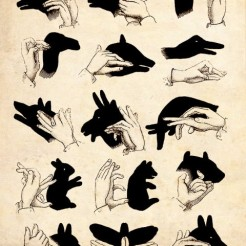 shadow-puppets-lyla-blu-by-gillian