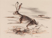 Otis Dozier, Jack Rabbit, 1987, lithograph, Dallas Museum of Art, gift of The Dozier Foundation 1990.62