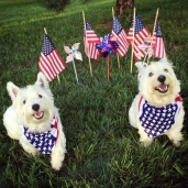 George and his Uncle Cosmo celebrated the Fourth of July in style!