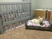 George also prepared a dog-themed nursery for his future BFF. Crib skirt and dog pillow by Leah.