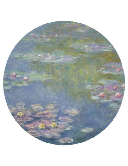 Claude Monet, Water Lilies, 1908, oil on canvas, Dallas Museum of Art, gift of the Meadows Foundation, Incorporated, 1981.128