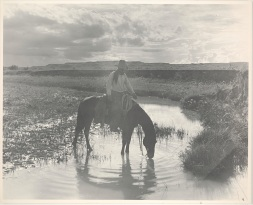 "Erwin E. Smith, ""Frank Smith, Watering His Horse, Cross-B Ranch, Crosby County, Texas,"" c. 1909, gelatin dry plate negative, Dallas Museum of Art, Dallas Art Association Purchase, 1959.35.7"