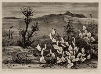 "William Lester, ""Yucca and the Prickly Pear,"" 1941, lithograph, Dallas Museum of Art, gift of A. H. Belo Corporation and The Dallas Morning News, 1986.110, © The Estate of William L. Lester"